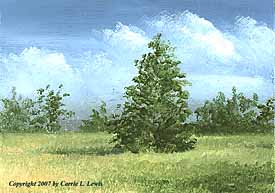 Landscape Study #108 2007