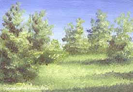 Landscape Study #109 2007