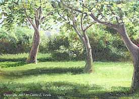 Landscape Study #146 2007