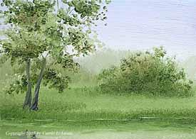 Landscape Study #147 2007
