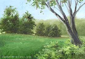 Landscape Study #148 2007