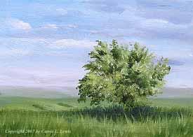 Landscape Study #149 2007