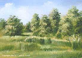 Landscape Study #151 2007
