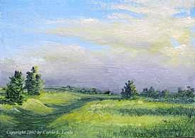 Landscape Study #165 2007