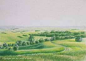 Landscape Study #176 2007