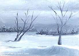 Landscape Study #218 2007