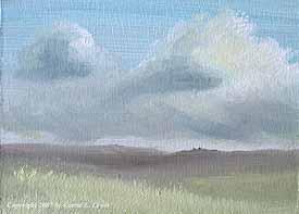 Landscape Study #223 2007