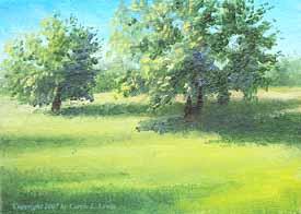 Landscape Study #226 2007