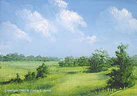 Landscape Study #227 2007