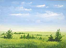 Landscape Study #228 2007