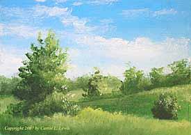 Landscape Study #235 2007