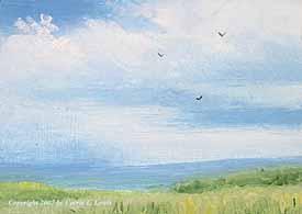 Landscape Study #237 2007