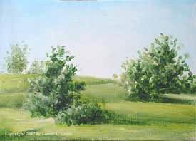 Landscape Study #239 2007