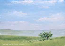 Landscape Study #242 2007