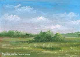 Landscape Study #281 2007