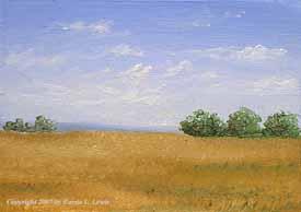 Landscape Study #283 2007