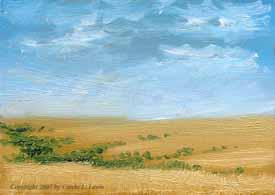 Landscape Study #284 2007