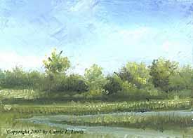 Landscape Study #314 2007