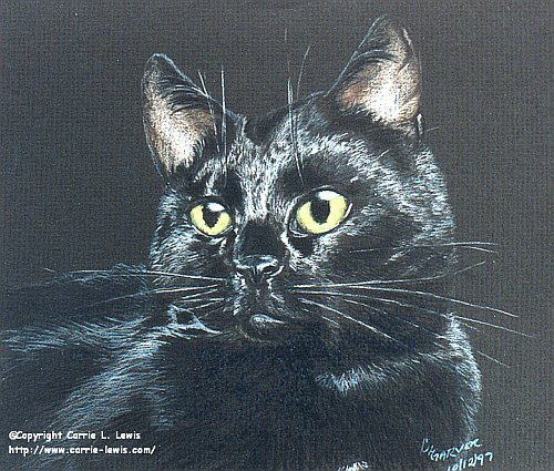 Colored Pencil drawing on black