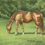 cropped-green-pastures-200-150.jpg