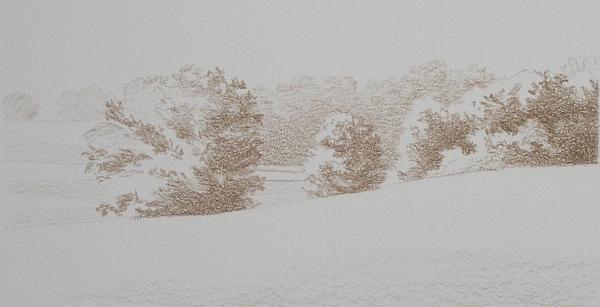 Landscape Umber Under Drawing 1