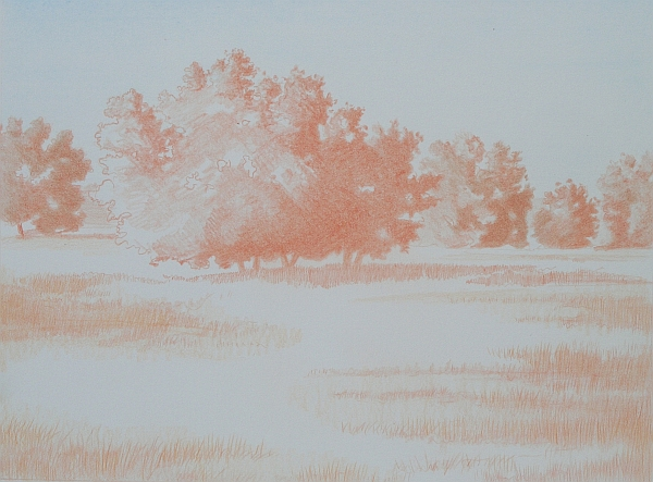 Landscape Complementary Under Drawing 3
