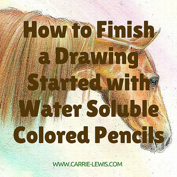 How to Finish a Drawing Started with Water Soluble Colored Pencils