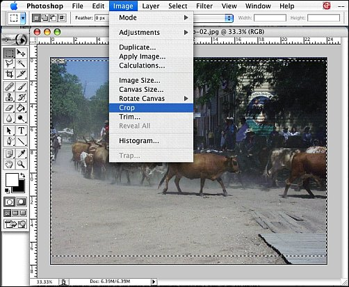 Processing Reference Photos Step 2a