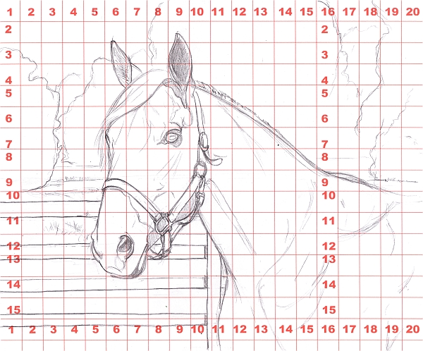 How to Draw a Horse Using a Grid Step 3