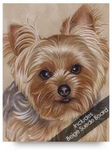 Yorkie Drawing Kit
