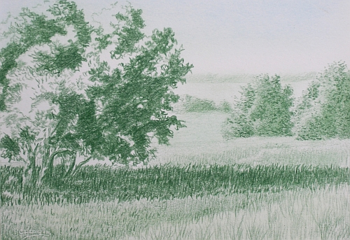 Green Landscape Under Drawing With Sky