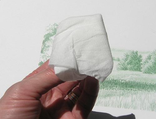 Drawing with Bath Tissue - Wa-la! A clean tissue!