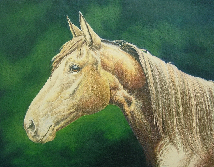 Make a Colored Pencil Drawing Look Like an Oil Painting - Background