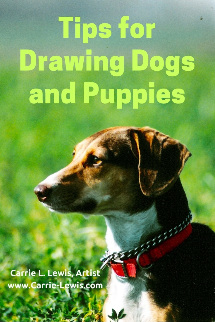 Tips for Drawing Dogs and Puppies
